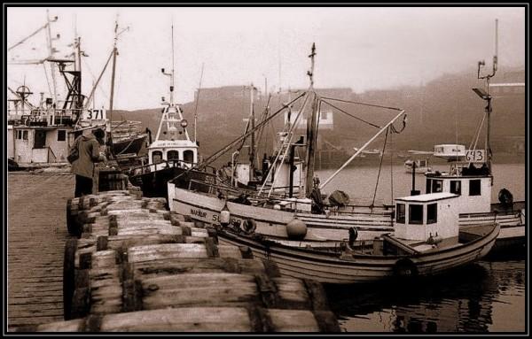 Dans le port d'Husavik - 4