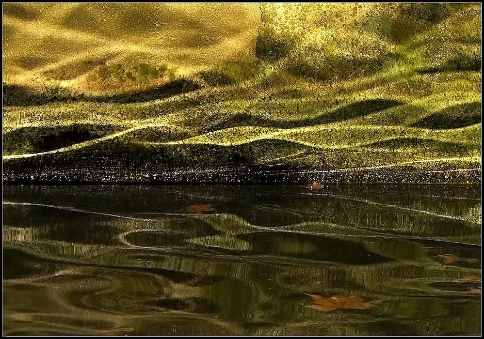 Rêverie aquatique ~ 2