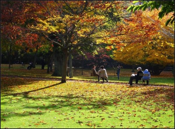 ...Un automne paisible et lumineux