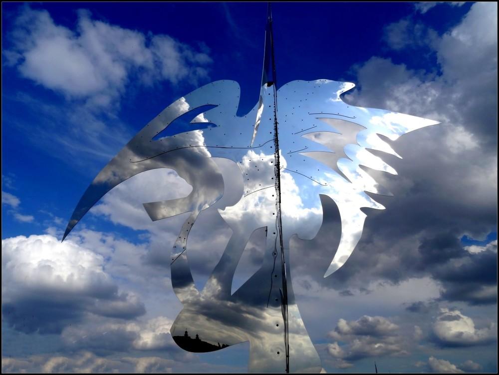 Un oiseau dans le ciel