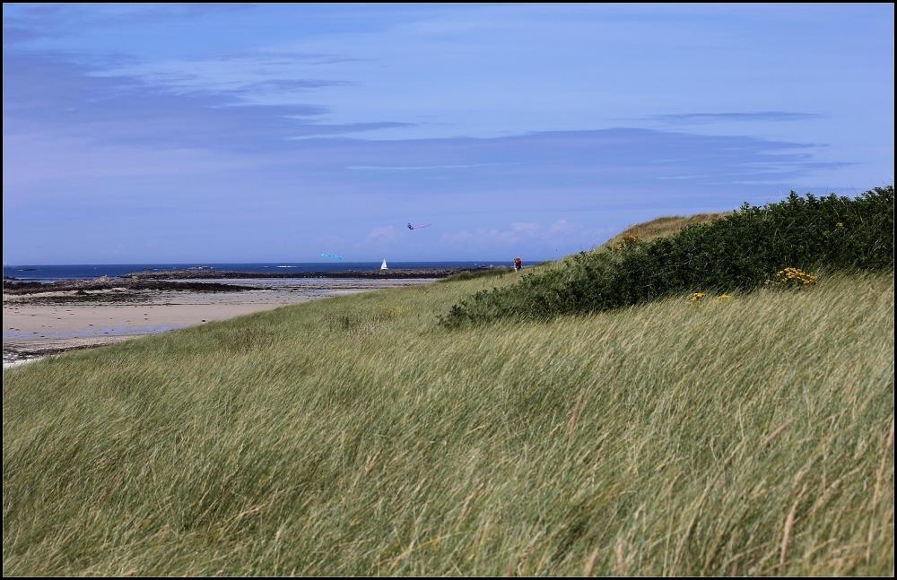 Dunes  ~2/2