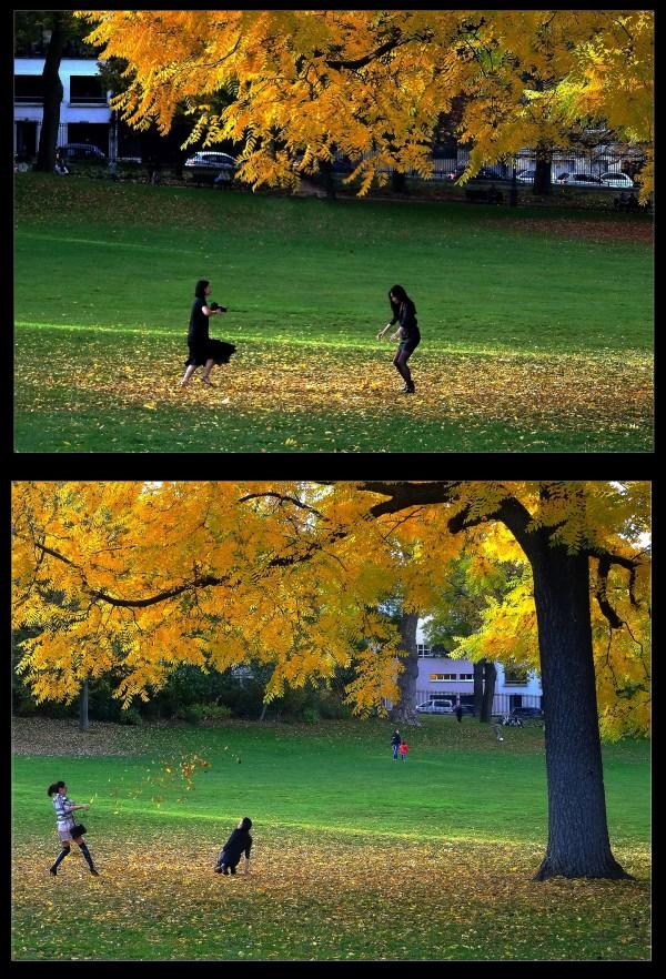 Scènes d'automne au parc - 2