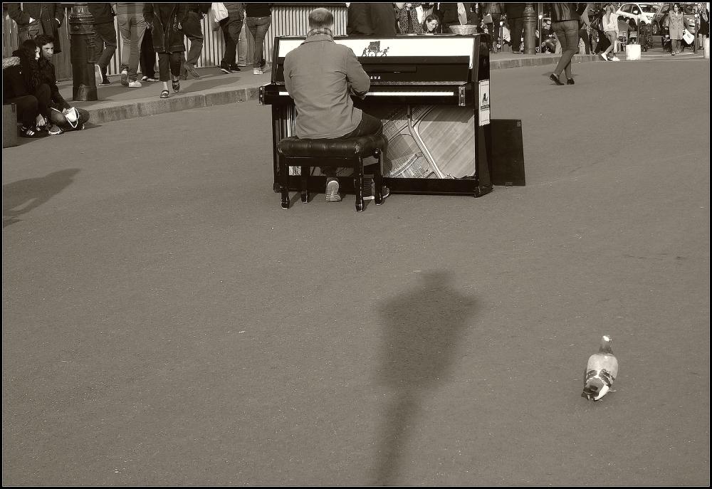 Les groupies du pianiste