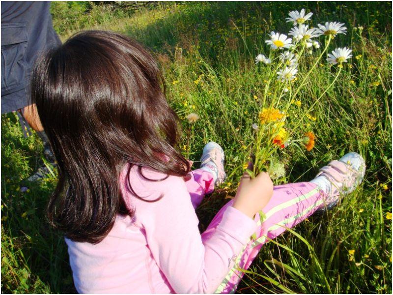 2009 07 13 Soraya on a flower field