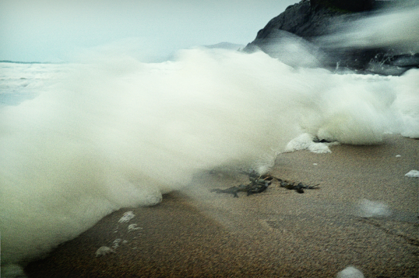 wild surf foam in winter storm