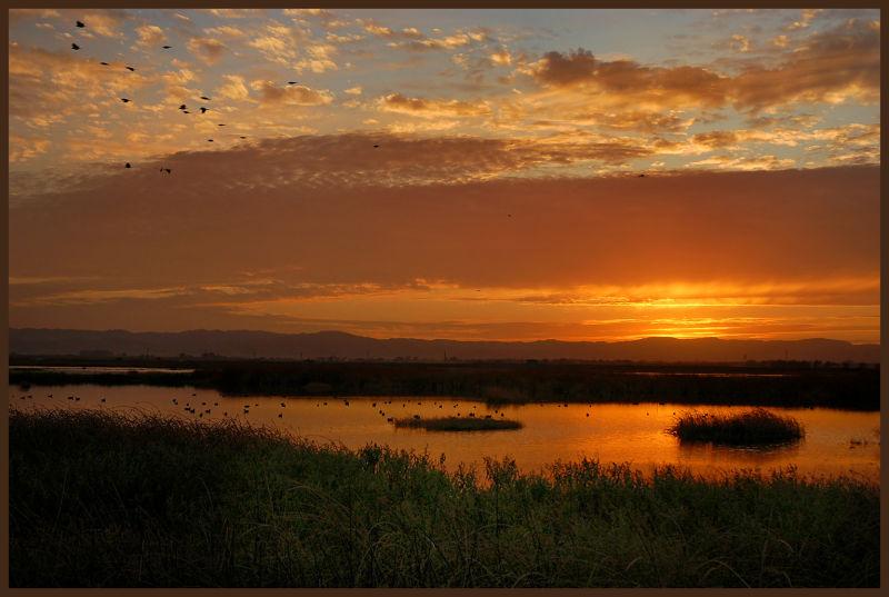 Suntet Grasslands Wildlife Refuge, California