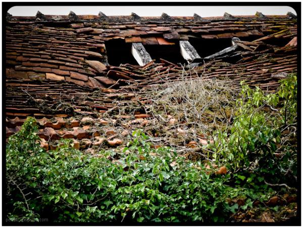 old farm 11