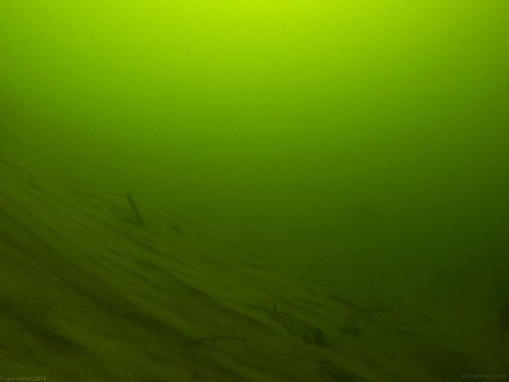 underwater sandbar in the Clark Fork River