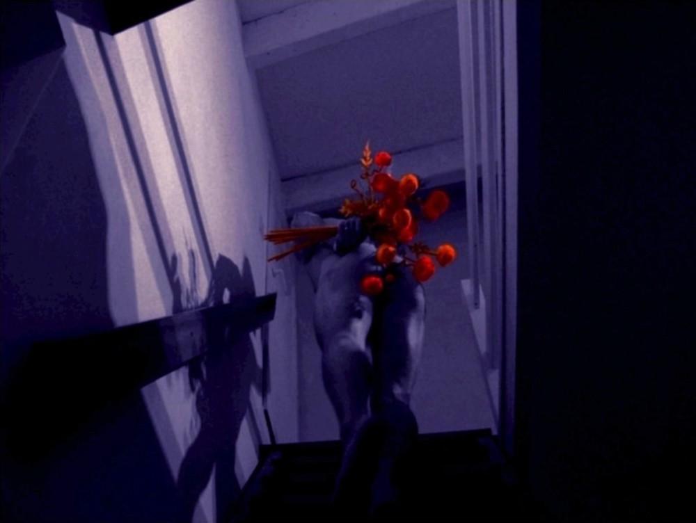 Dites Le Avec Des Fleurs / Say It With Flowers .