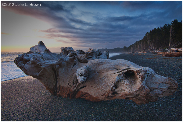 rialto beach sunset olympic national park