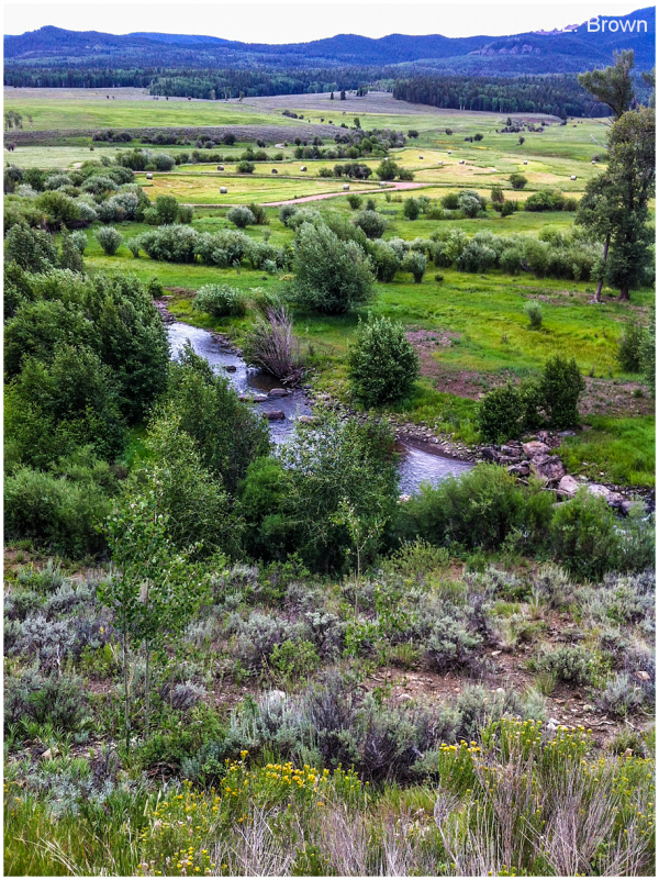 ranchland along ohio creek road gunnison colorado