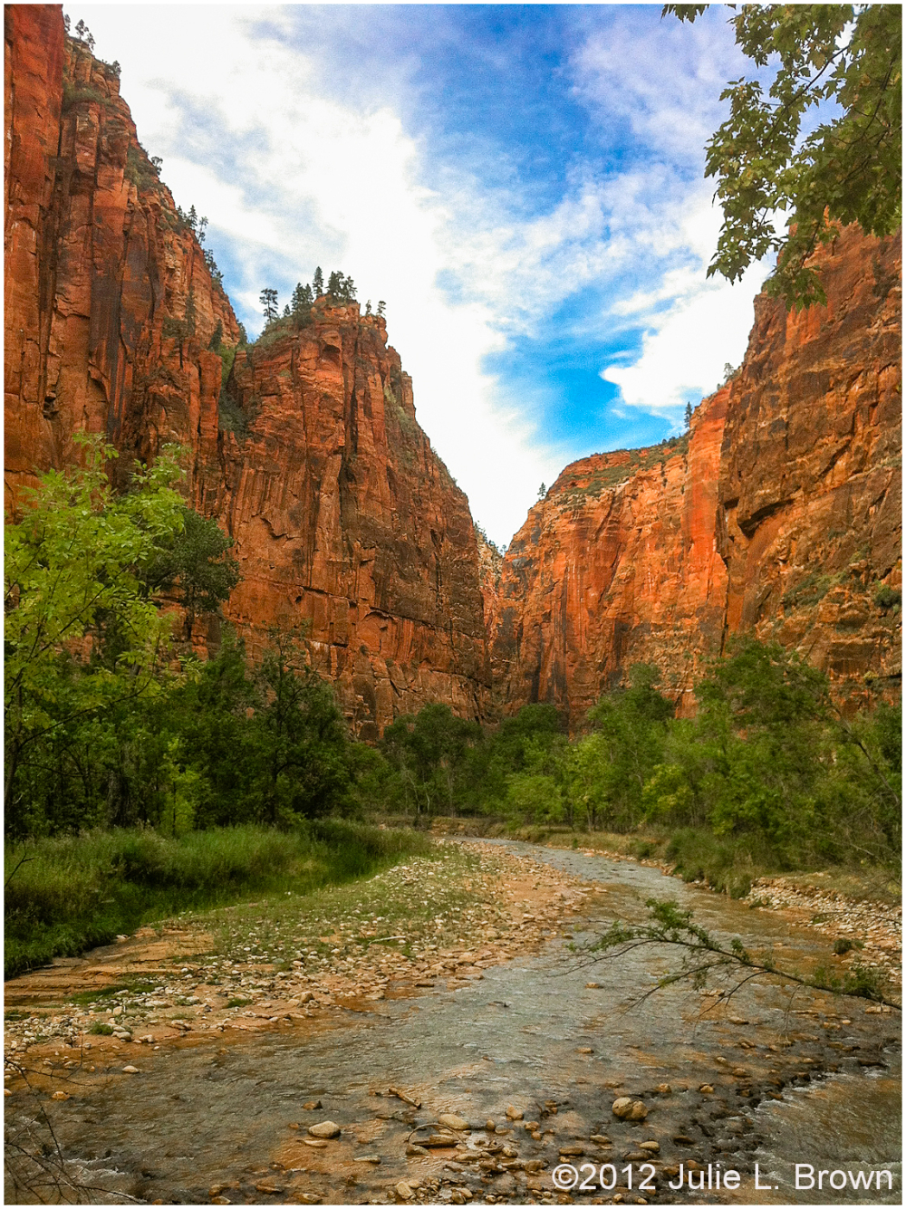 virging river flowing into zion canyon