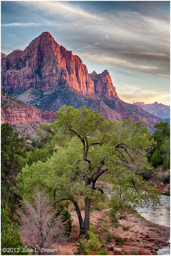 the watchman before sunset HDR zion national park