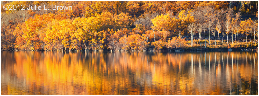 late afternoon fall color at kolob reservoir utah