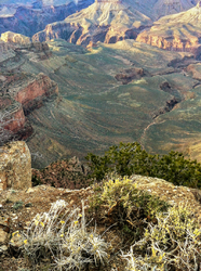 Evening Light: Grand Canyon, iphone landscape 1/4