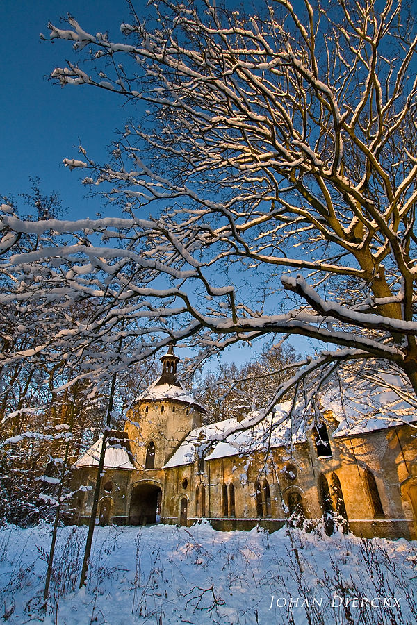 Winter @ Wijnegempark
