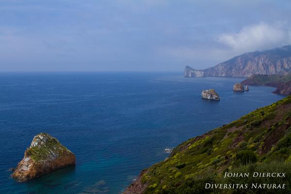 Coastline near Nebida
