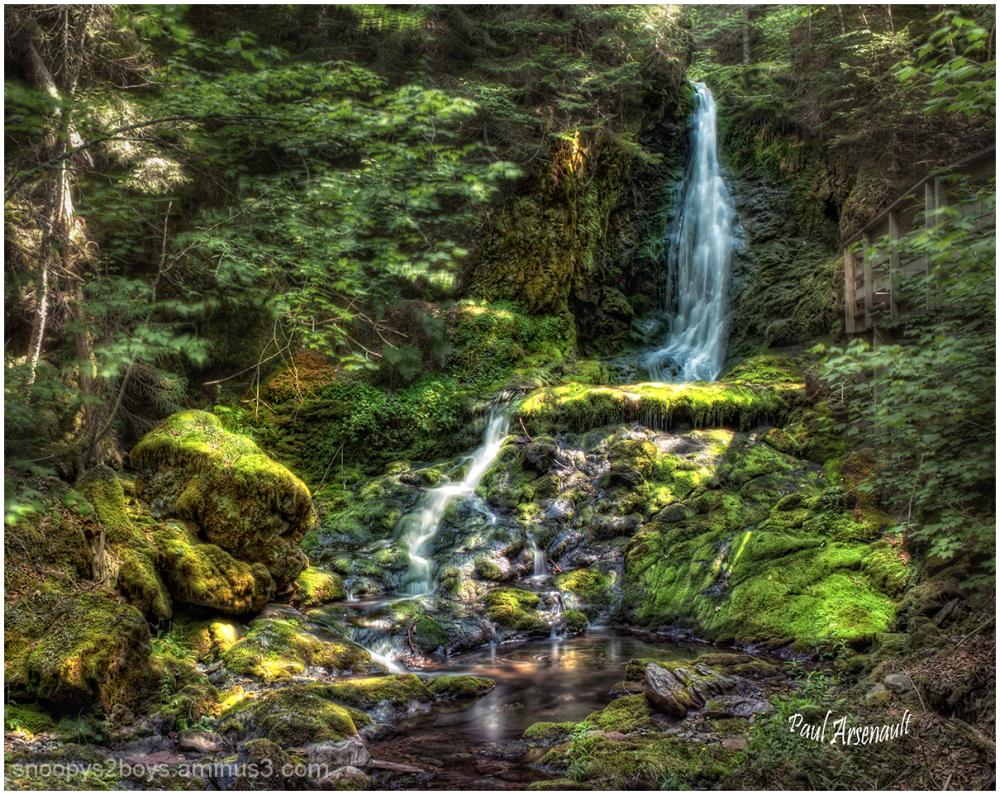 Dickson Falls..........