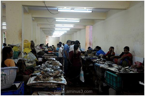 Fish Market..