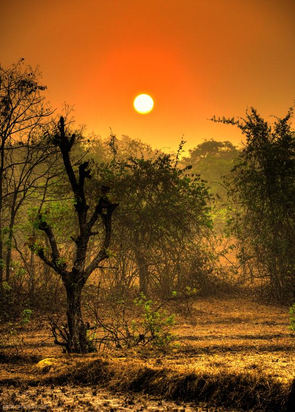 Sunrise...4