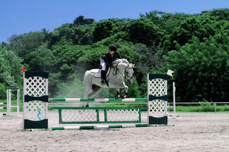 Concours d'équitation (CSO)
