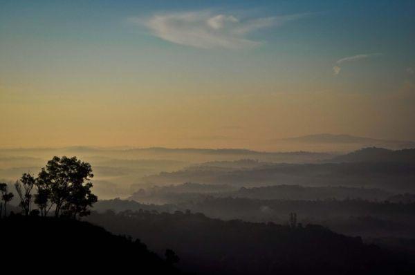 A Misty Sunrise...