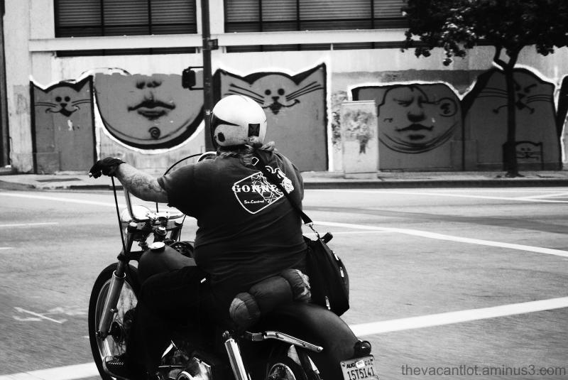 Chubby Biker
