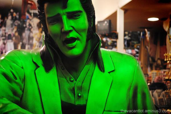 Elvis Envy