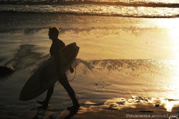 Surfer Boy 3