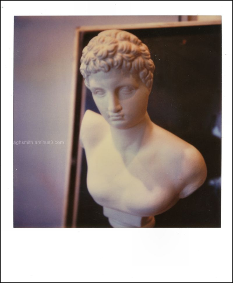 a bust of appollo