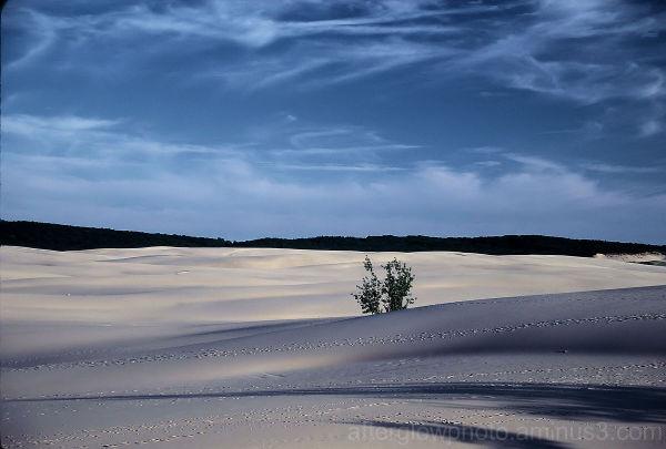 Sand & Shadows