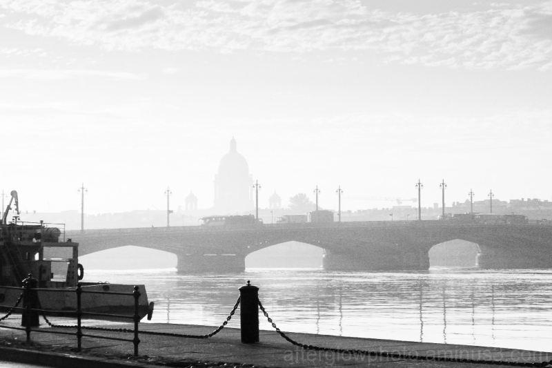 Saint Petersburg Bridge