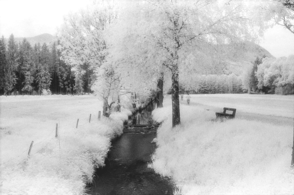 infrared experiments #5
