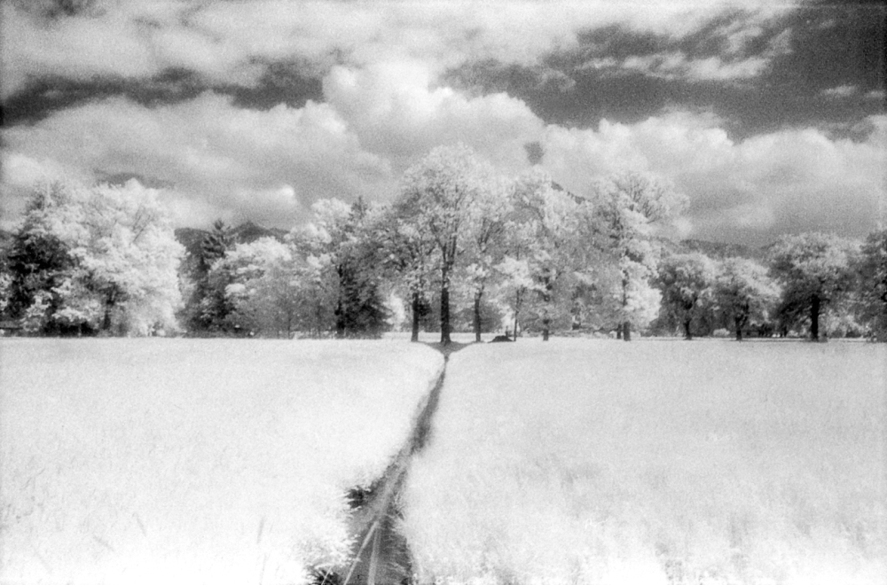 infrared experiments #7