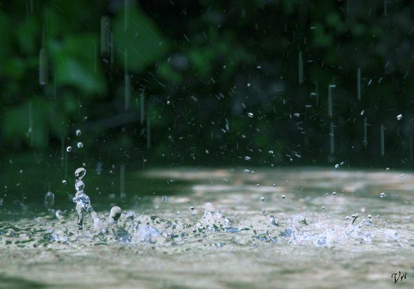 Splashhhh...!!