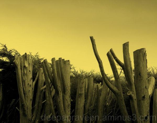 Deepa photos,