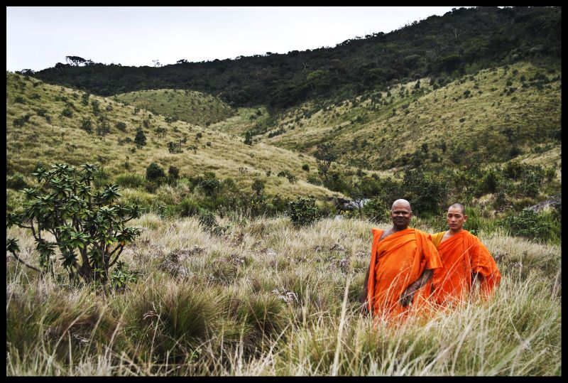 Buddhism in sri lanka