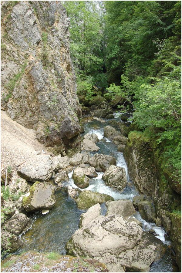 Rivière Gorges