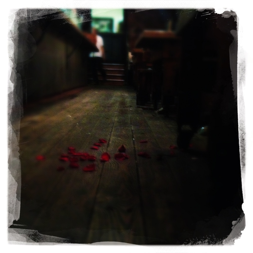 flowers on the Cambie Floor