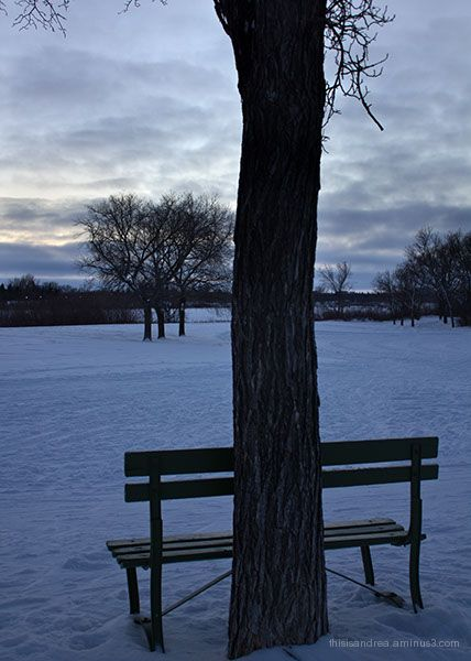 Winter rhapsody II