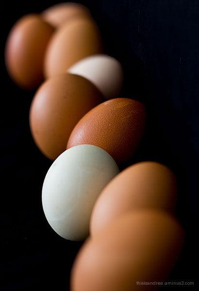 Eggs ... again