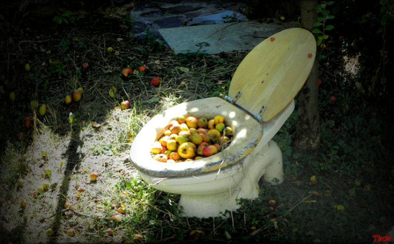 Pommes et WC...