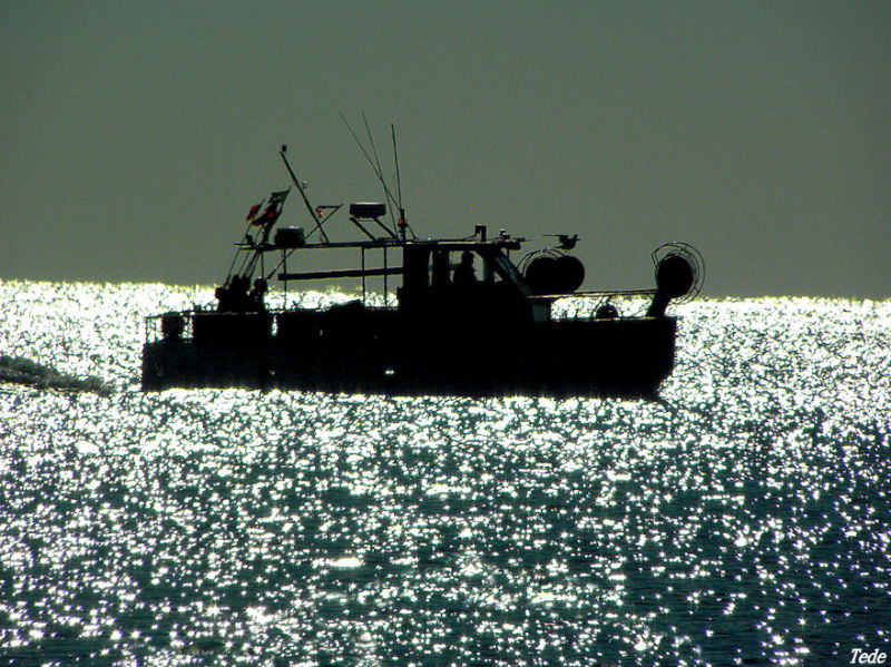 Chalutier en mer