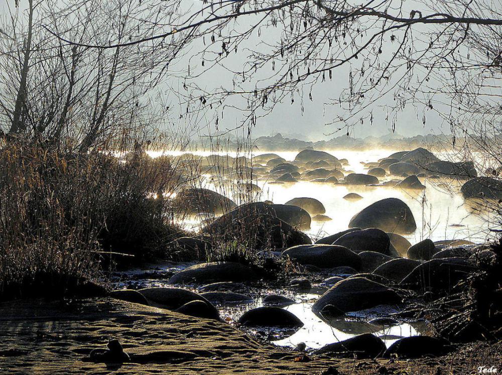 Le solei le matin sur la rivière