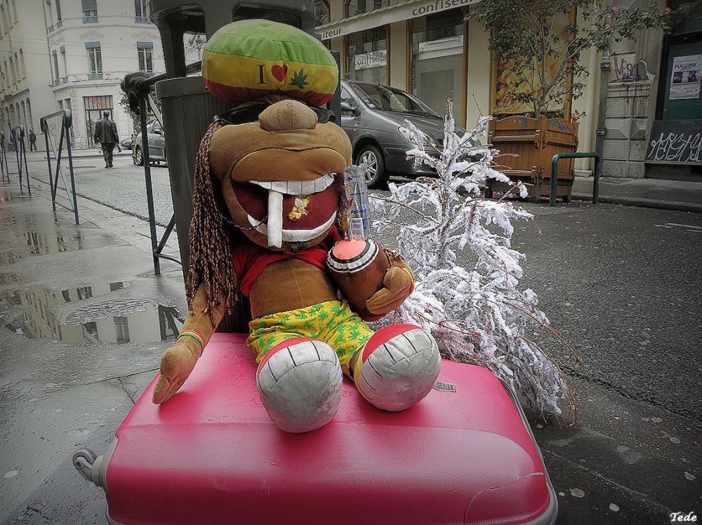 Trouvé dans une rue de Lyon