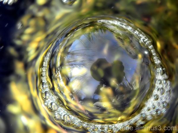 Reflet bulle d'eau