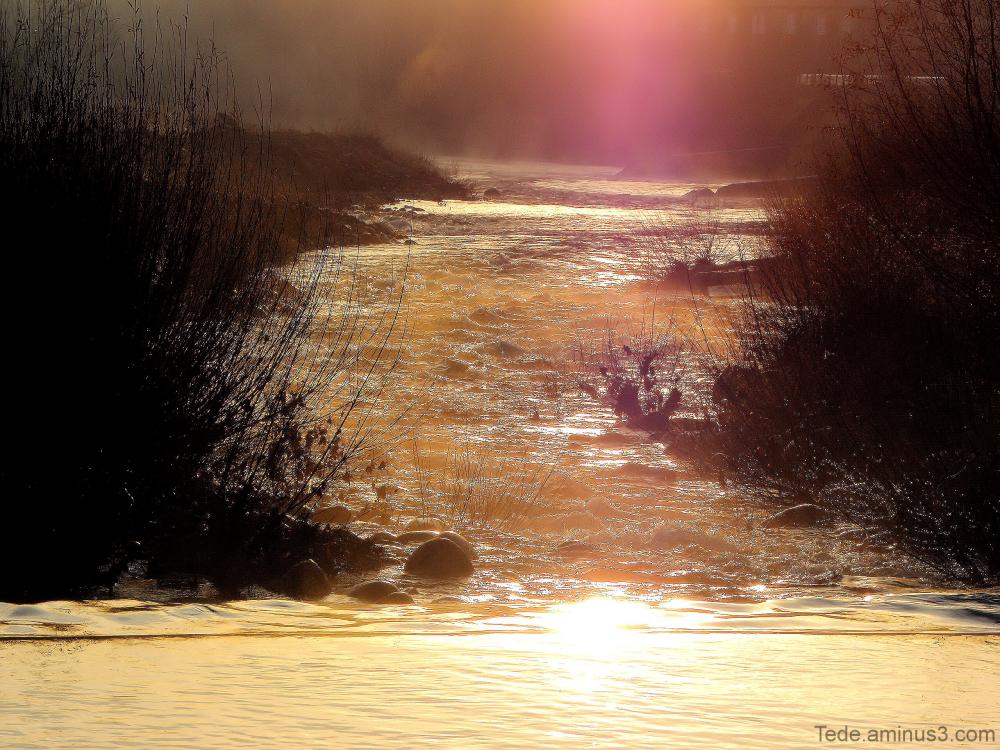 Rivière à l'aube