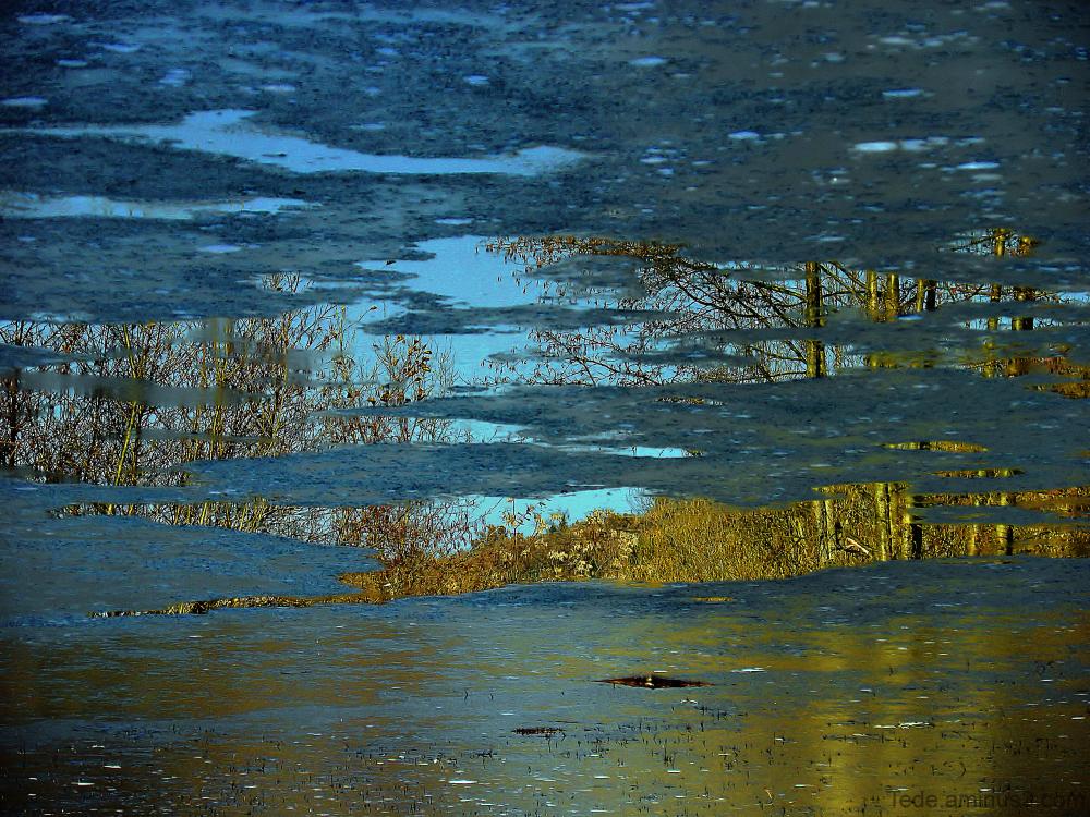 Reflet et glace