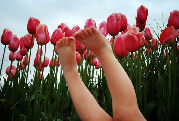 Tiptoes in the Tulips