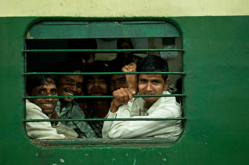 En cage  /  In the cage